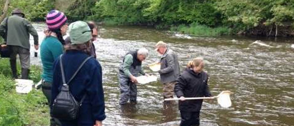 Winter 2013-2014 PRT Volunteers Riverfly Monitoring Results