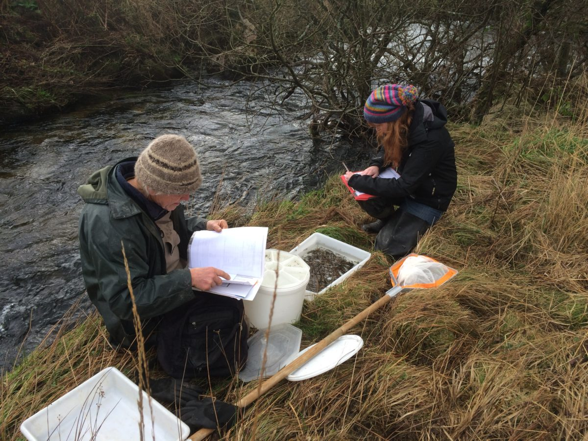 Health and Safety for Riverfly monitoring volunteers