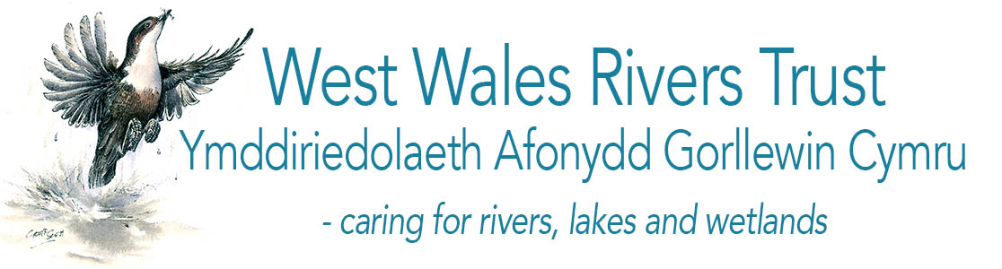 West Wales Rivers Trust
