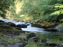 Doethie and Upper Tywi Restoration Projects:  A Summary By Brian Jones
