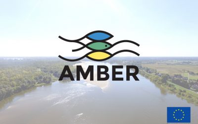 The AMBER project: a collaborative project for guidance on barrier location, removal and mitigation in Europe