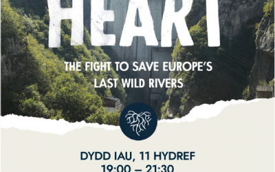 The Fight to Save Europe's Last Wild Rivers
