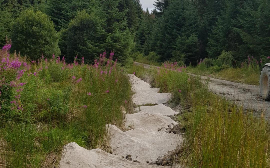 An update on the Doethie in-river sand liming and Leader + forestry gully liming Pilot Project