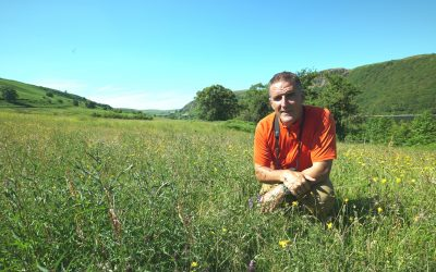 Plight of West Wales' polluted rivers highlighted by BBC Wales programme with Iolo Williams