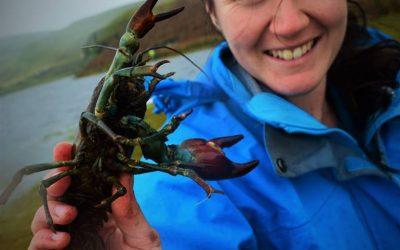 DNA in a drop: tracking aquatic species using environmental DNA