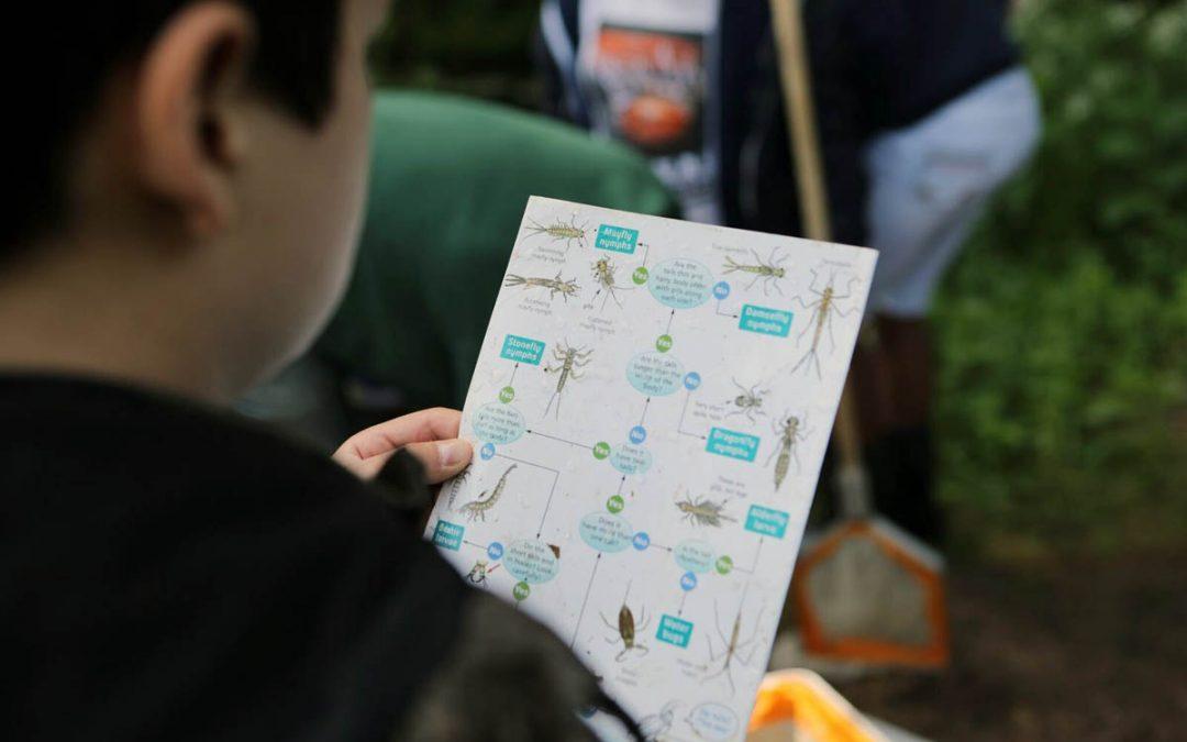 River home learning resources / Adnoddau dysgu cartref afon