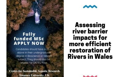 Fully funded MSc opportunity: Assessing river barrier impacts